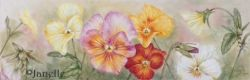 Online Video Class-Pansy Mania
