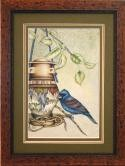 E-tutorial Blue Grosbeak