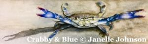 Crabby & Blue - SDP Conference