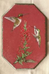 E-Tutorial Ruby-Throated Hummingbirds & Cardinal Flowers